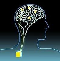 Impiantato per la prima volta negli USA un 'Pacemaker' per l'Alzheimer