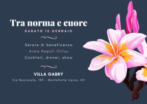 tra norma e cuore - charity winter shownight