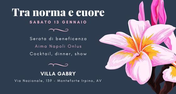 Tra Norma e Cuore – Charity Winter Shownight