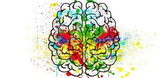 Corso di Formazione – Neuropsicologia e Psicobiologia delle Demenze
